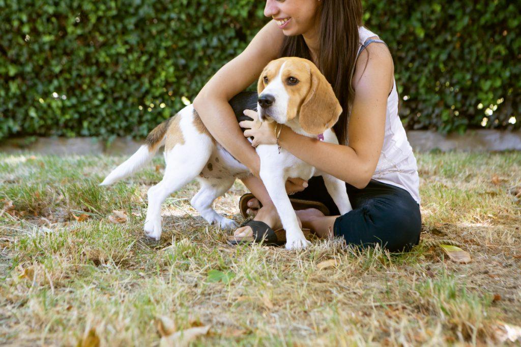 La tecnologia FirSystem è adatta al benessere degli animali